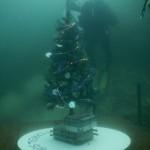 albero di natale subacqueo 2015 - foto GianClaudio Castellani