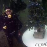 albero di natale subacqueo 2015 - foto Mauro Besana